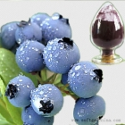 China Blueberry Extract factory