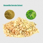 China Boswellia Serrata Extract factory