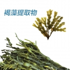 China Brown seaweed extract factory