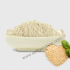 China Rice Protein Powder factory